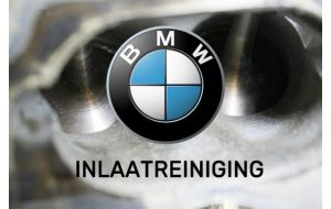 BMW Inlaatreiniging specialist