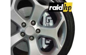 Remklauw verf zilver - Raid HP